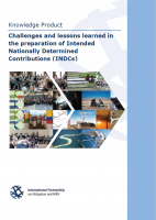 NewClimate Institute / GIZ (2016): Challenges and lessons learned in the preparation of Intended Nationally Determined Contributions (INDCs)